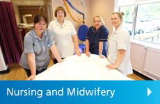 Nursing and Midwifery icon